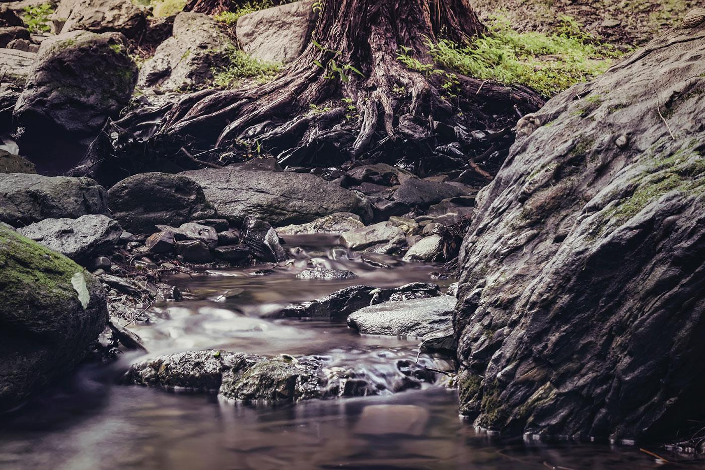 Vous êtes riverain de la Risle ou d'un de ses affluents ? Répondez à un questionnaire anonyme sur la rivière !